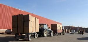 Tractores transportando tabaco en la campaña de 2012